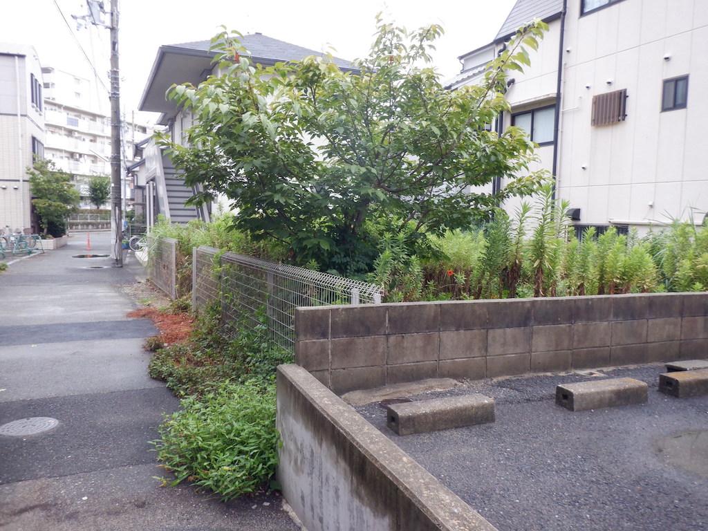 空き地の雑草メンテナンス